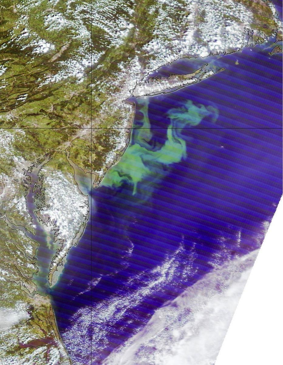 Europe, US Signs Major Environmental Monitoring Agreement