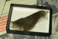 A lock of John Lennon\'s hair