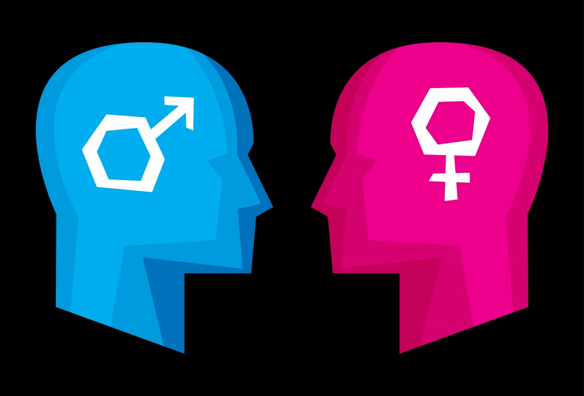 Are Male And Female Brains Really Different-3747
