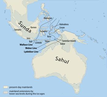 Sahul continent