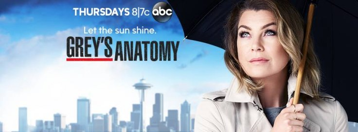 Watch Grey\'s Anatomy season 12 live online: Meredith trying to move ...