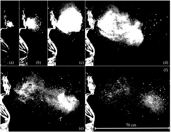 what happens when you sneeze?