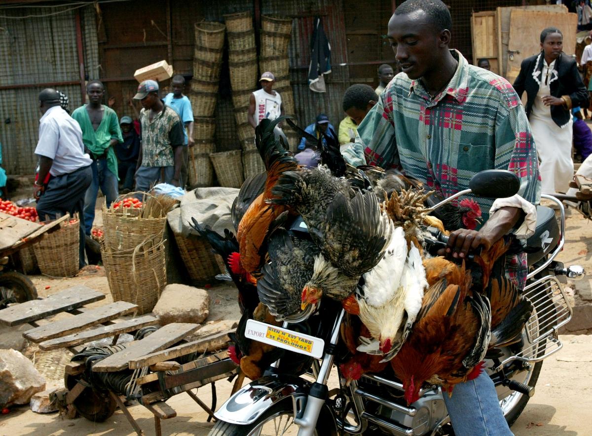 Rwandan man on motorcycle
