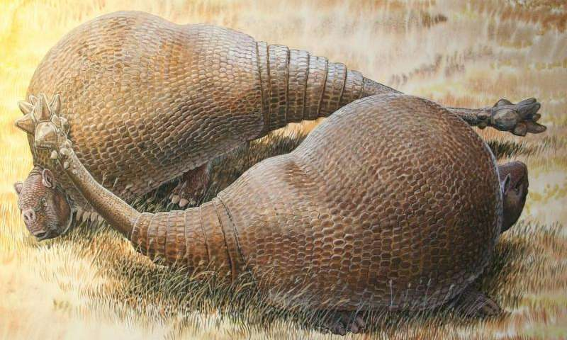 Glyptodonts, ancient ancestors of armadillos