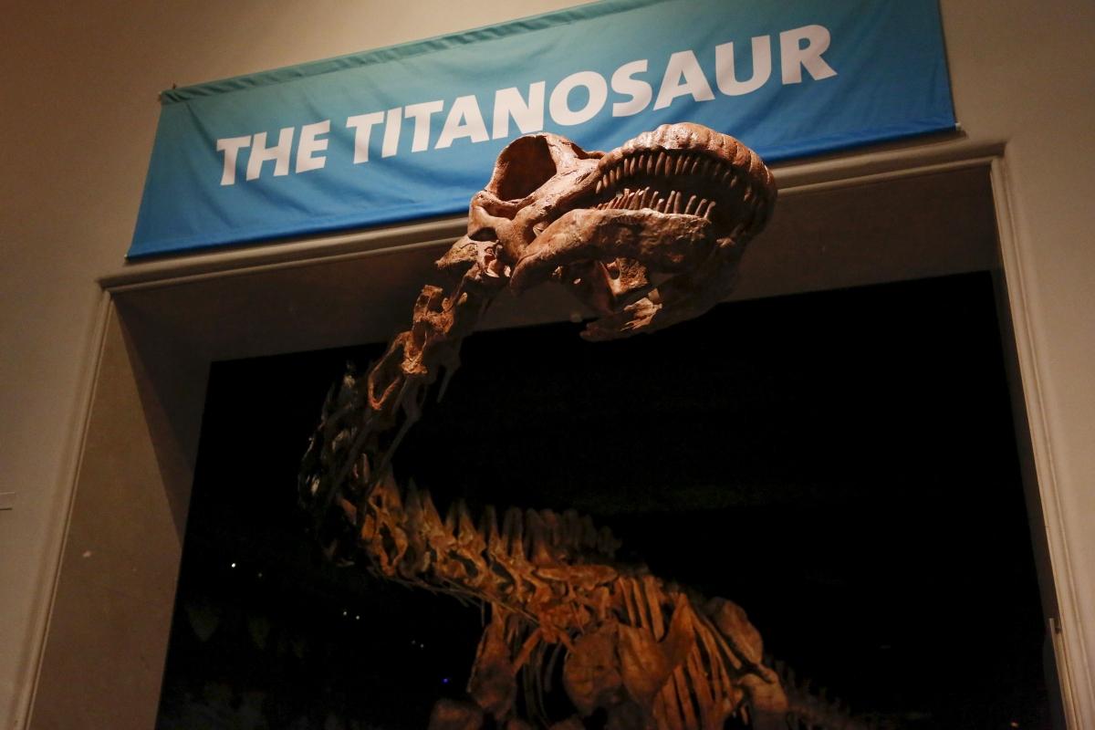 Titanosaur VR