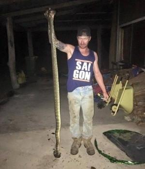 Giant snake attacks boy