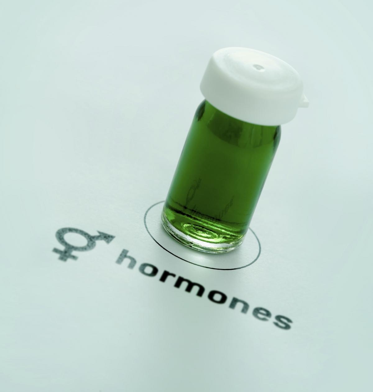 hormones pregnancy brain