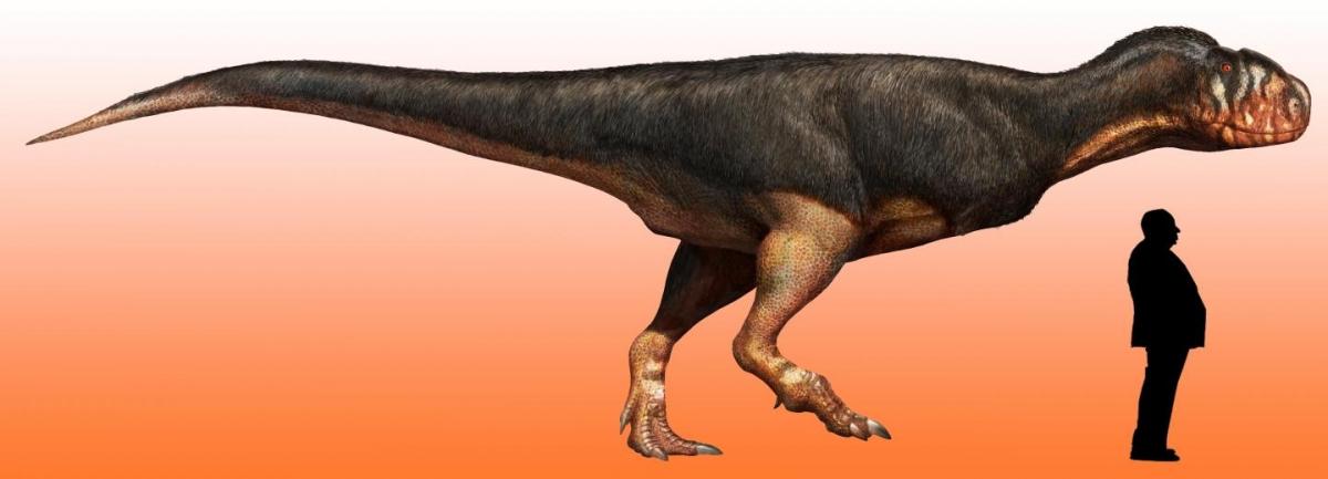 Abelisaur dinosaur