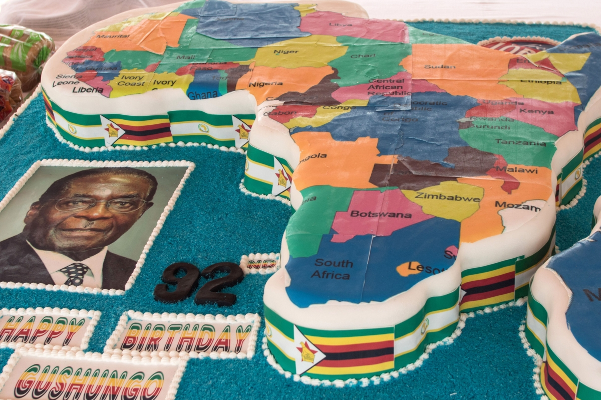 Zimbabwe: Mugabe's birthday party cake