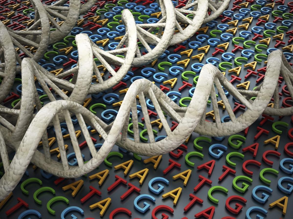 Advances in Genetics cover image