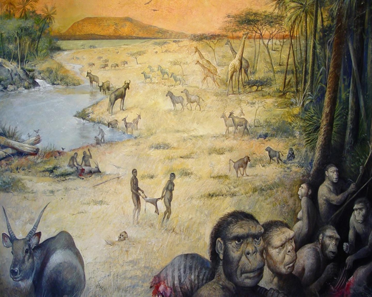Early human site