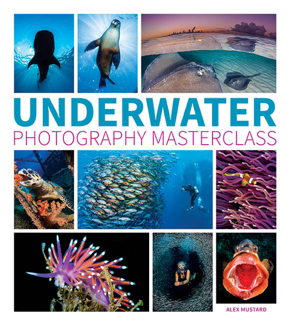 Underwater Photography Masterclass by Alex Mustard