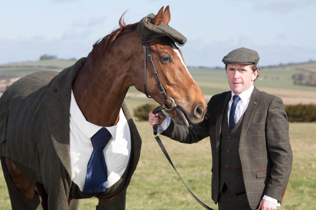 william hill cheltenham tweed horse