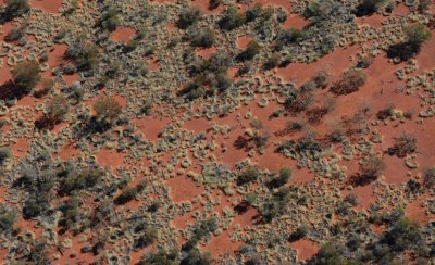 australia fairy circles