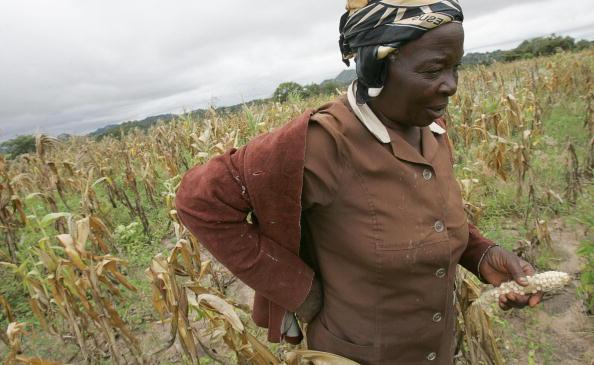 Drought in Zimbabwe