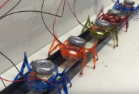 Stanford Ant-Bots main
