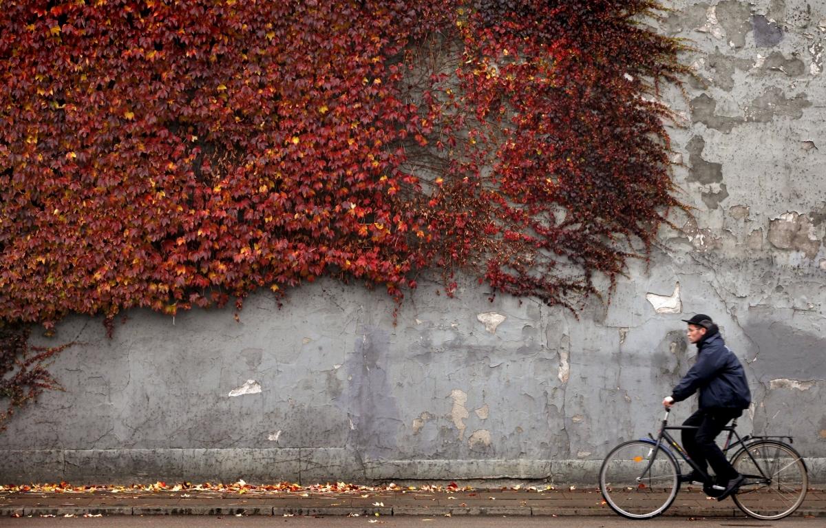 Bike riding denmark