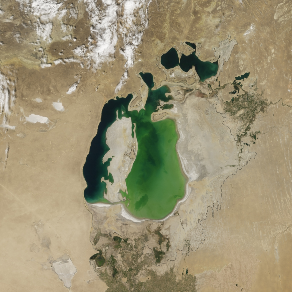 problems of aral sea essay A conference looks likely to enliven debate on both the aral sea s fate and the need for interventions on environmental problems that are causing international problems for health, ecology and vast pollution.