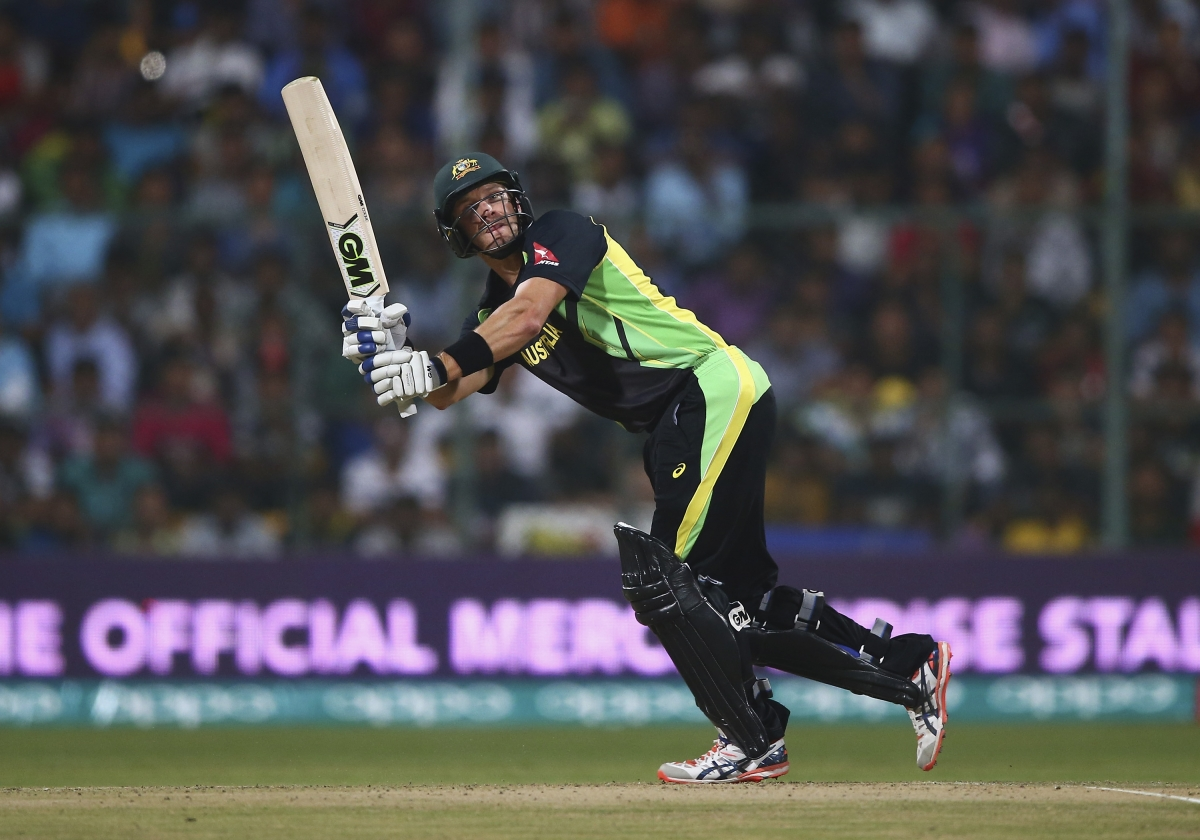 Shane Watson in action