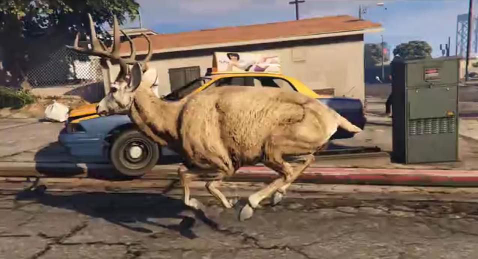 GTA deer
