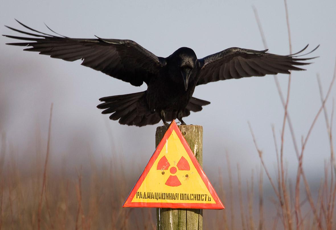 Chernobyl New Safe Confinement