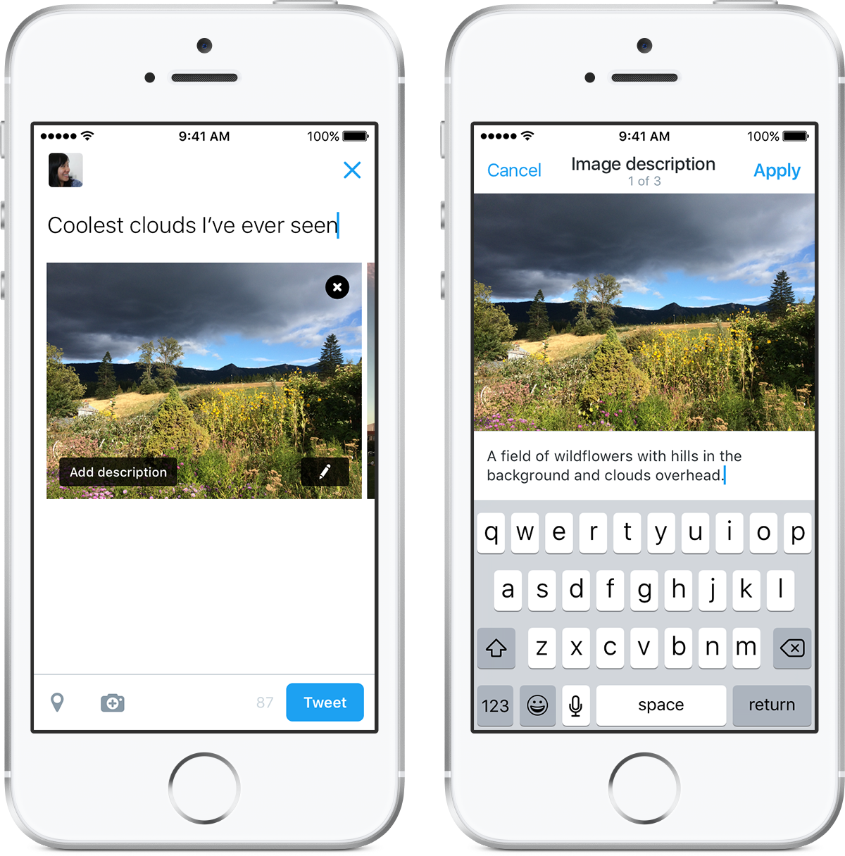 Twitter adds image descriptions to make pictures accessible to the visually impaired