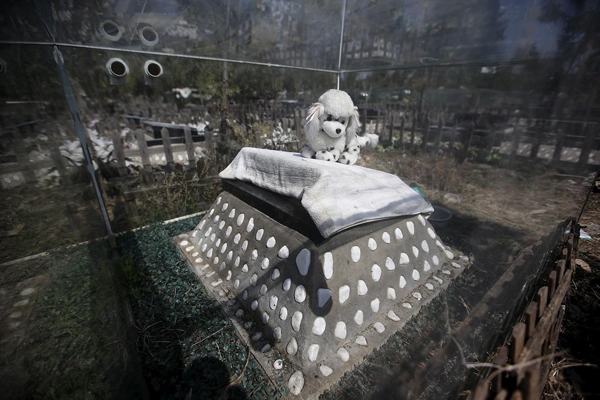 Baifu pet cemetery