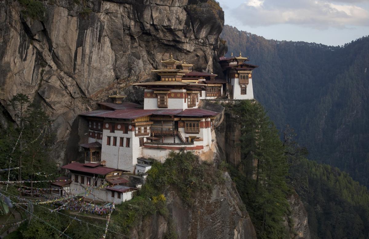 Bird's Nest, Bhutan