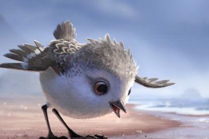 Pixar short Piper