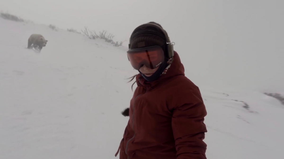 Snowboarder bear chase