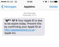 Apple phishing text
