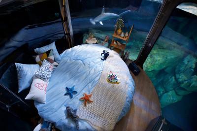 airbnb aquarium