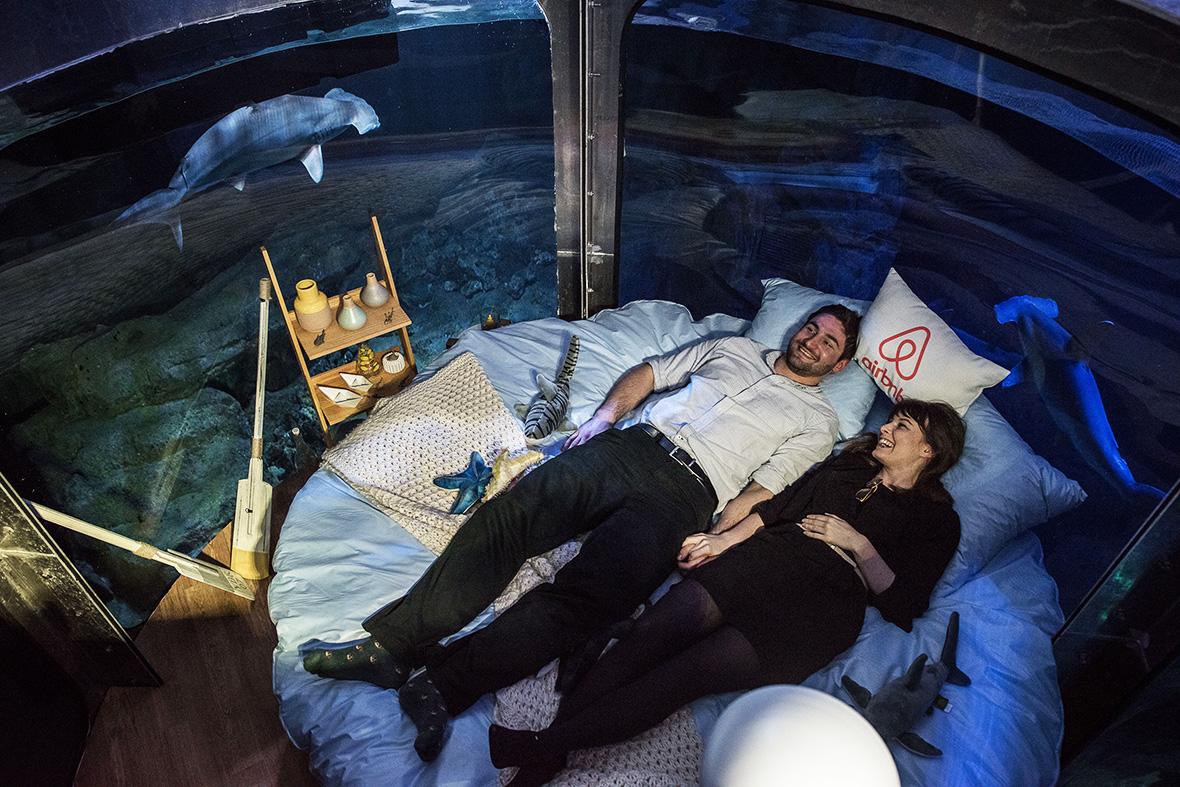 Airbnb Aquarium Guests Sleep In 360 Degree Underwater