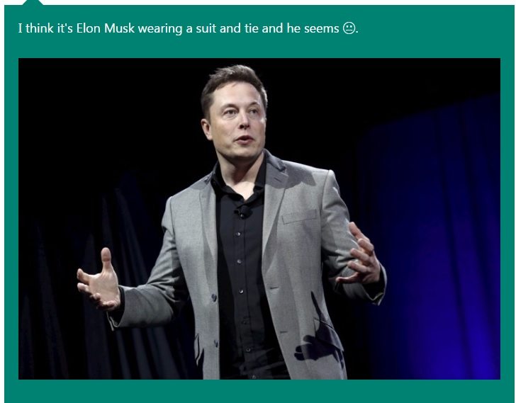 Microsoft Caption Bot Elon Musk