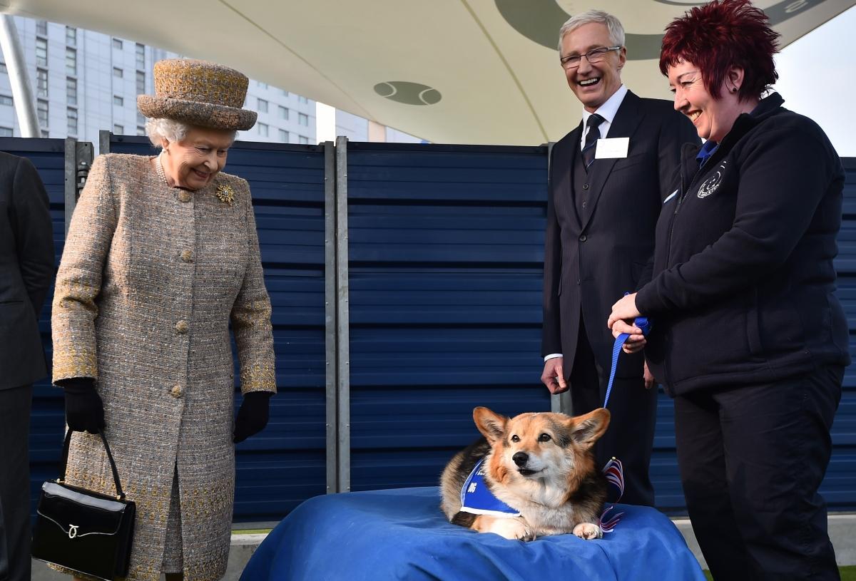 Queen looks at a Corgi
