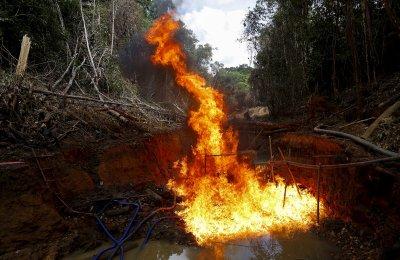 Amazon illegal gold mining