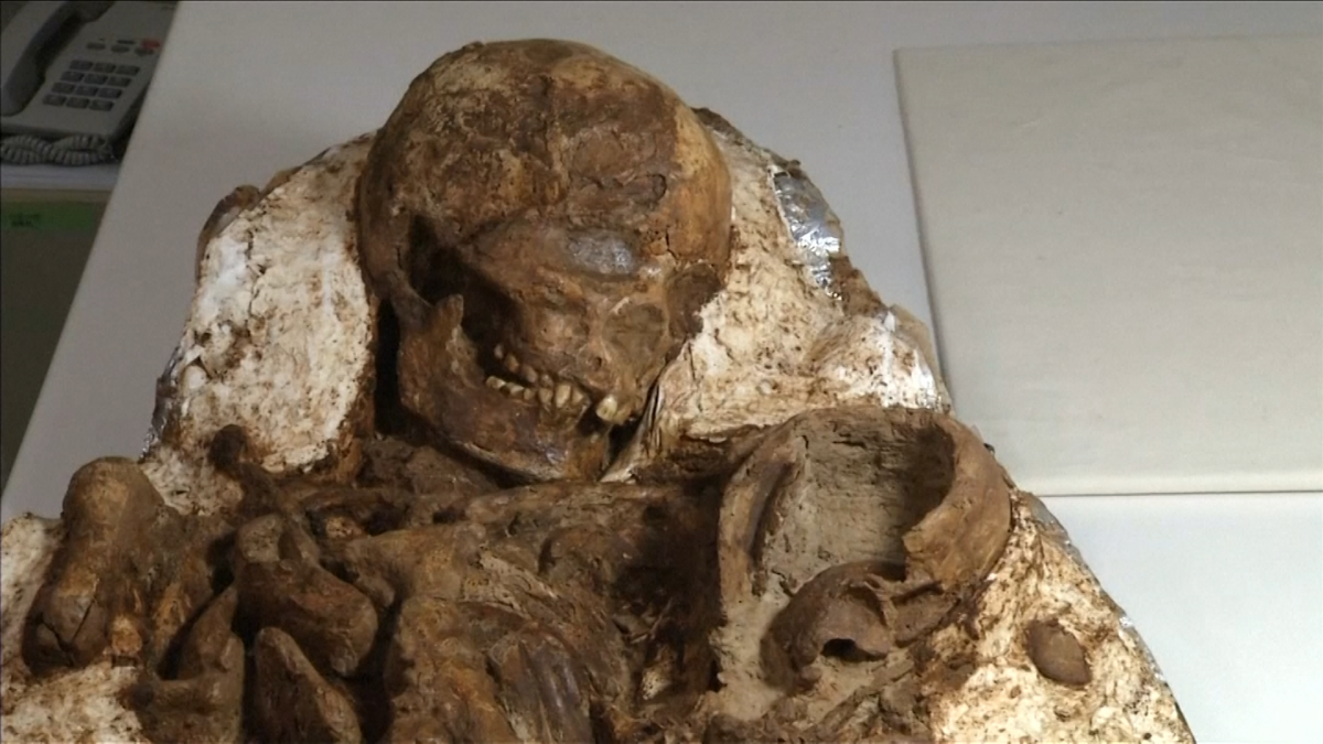 Fossil mother and baby