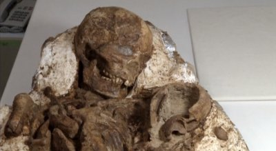 fossil mother child taiwan