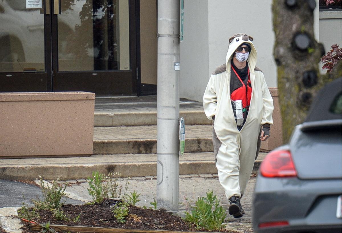 panda baltimore bomber
