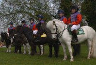 Shetland Pony race - without credit