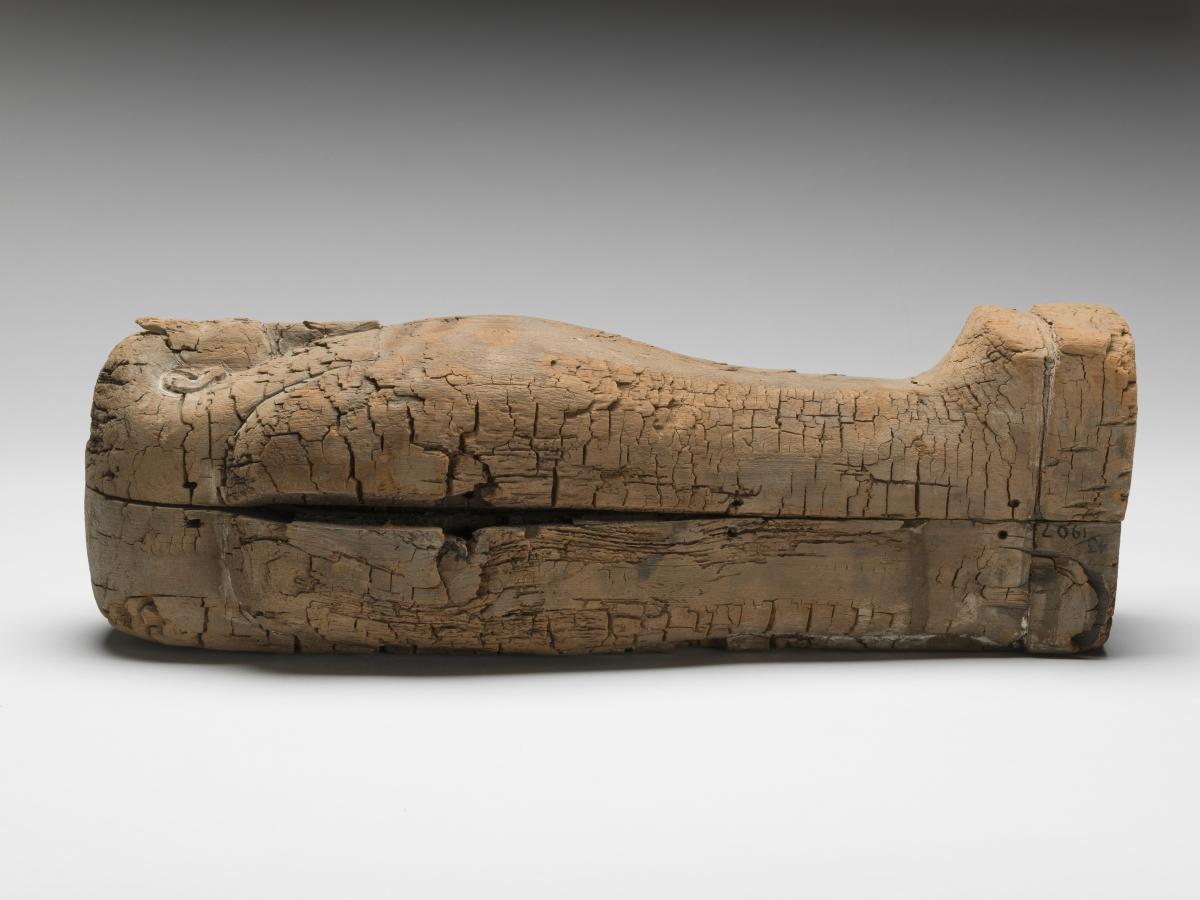foetus mummy