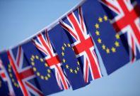 EU Referendum Brtain Brexit