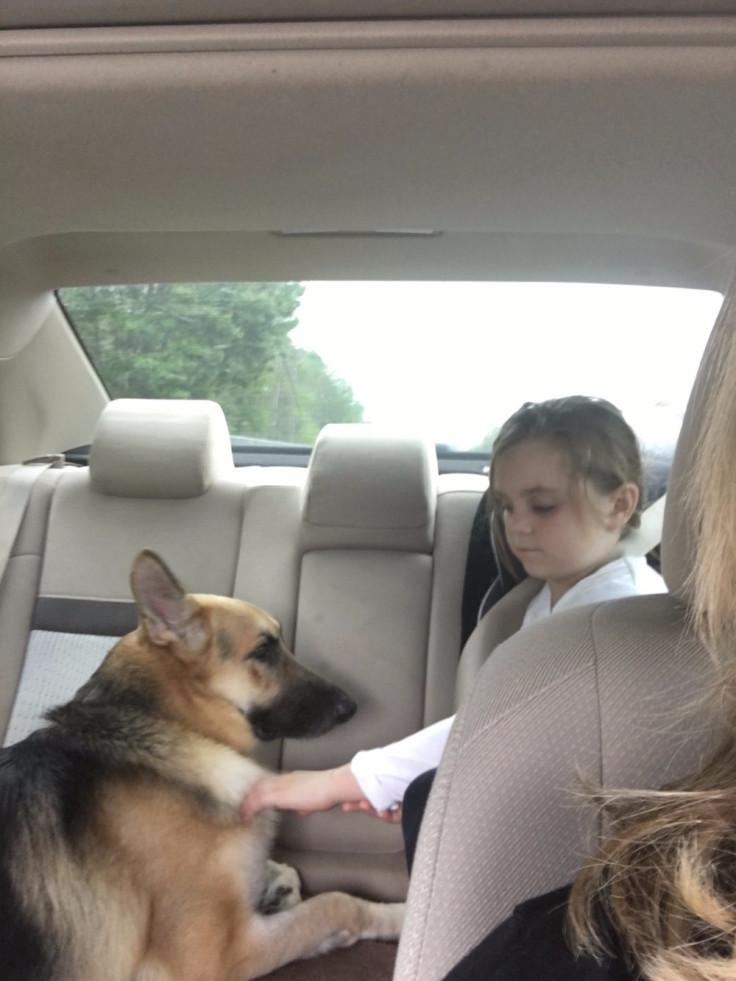 Dog saves girl from Rattlesnake