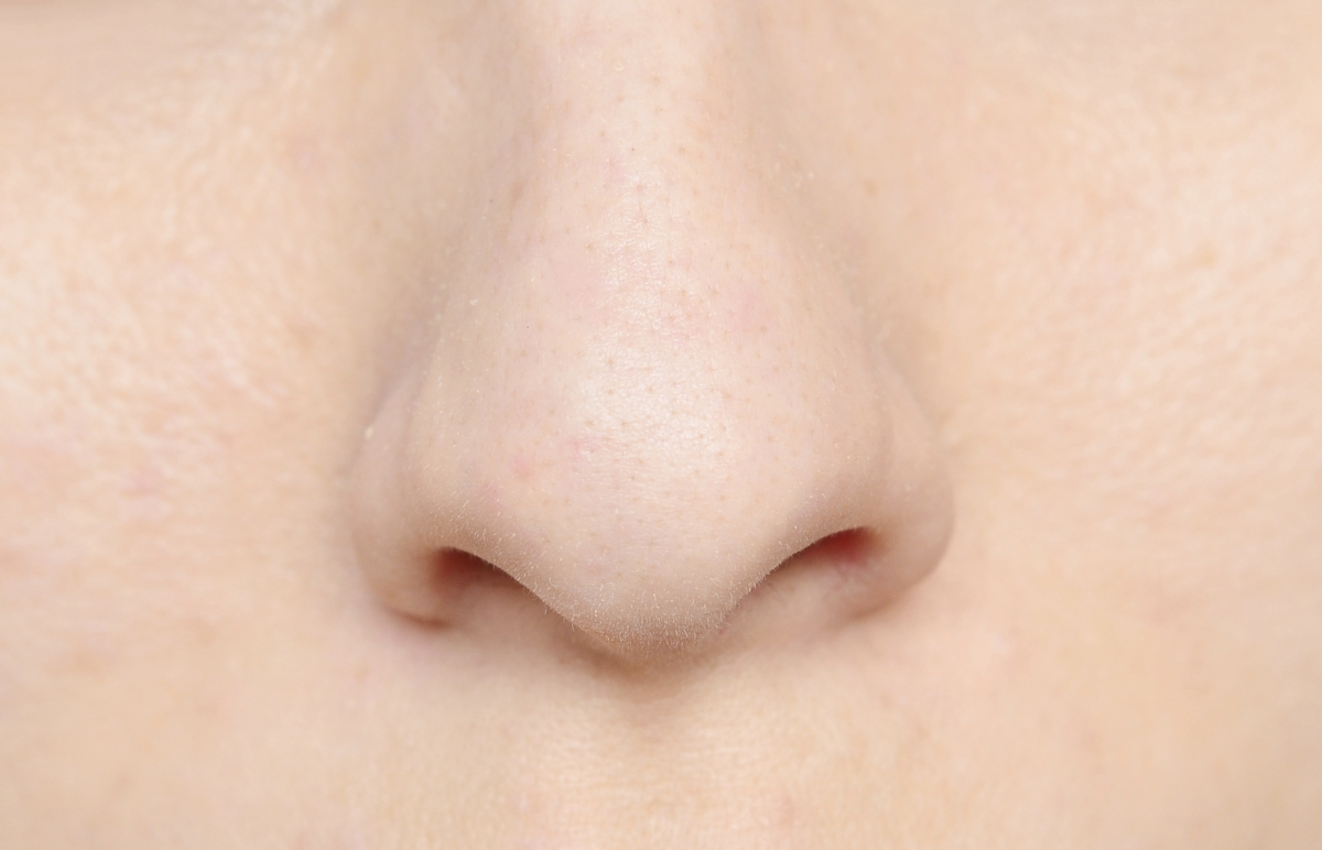 Nose shape in the genes