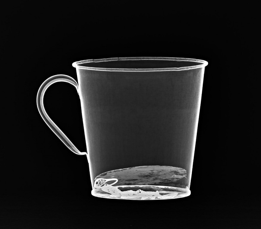 X-Ray of Auschwitz mug