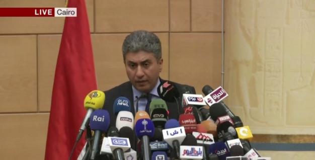 Egyptian aviation minister