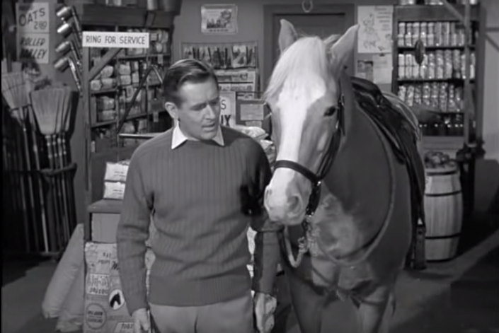 Alan Young and Mr Ed the horse