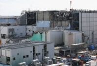 Fukushima clean up