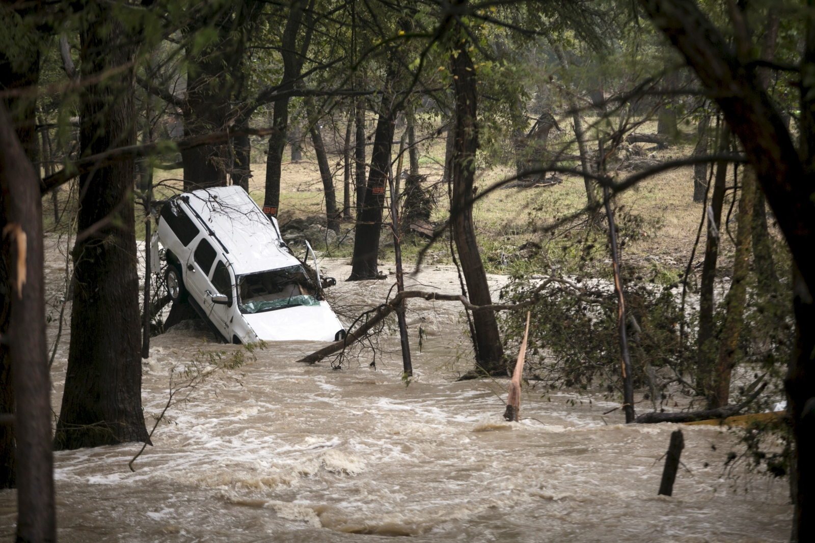 A car car is washed up against a tree in Cyprus Creek