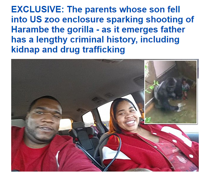 Daily Mail Harambe